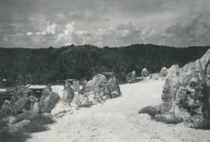Pinnacles on Ocean Island